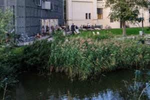 Pica Pica ved åen i Aarhus