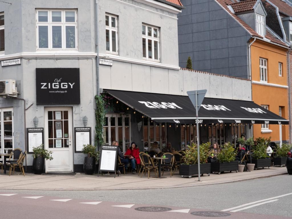 Café Ziggy på Trøjborg-9