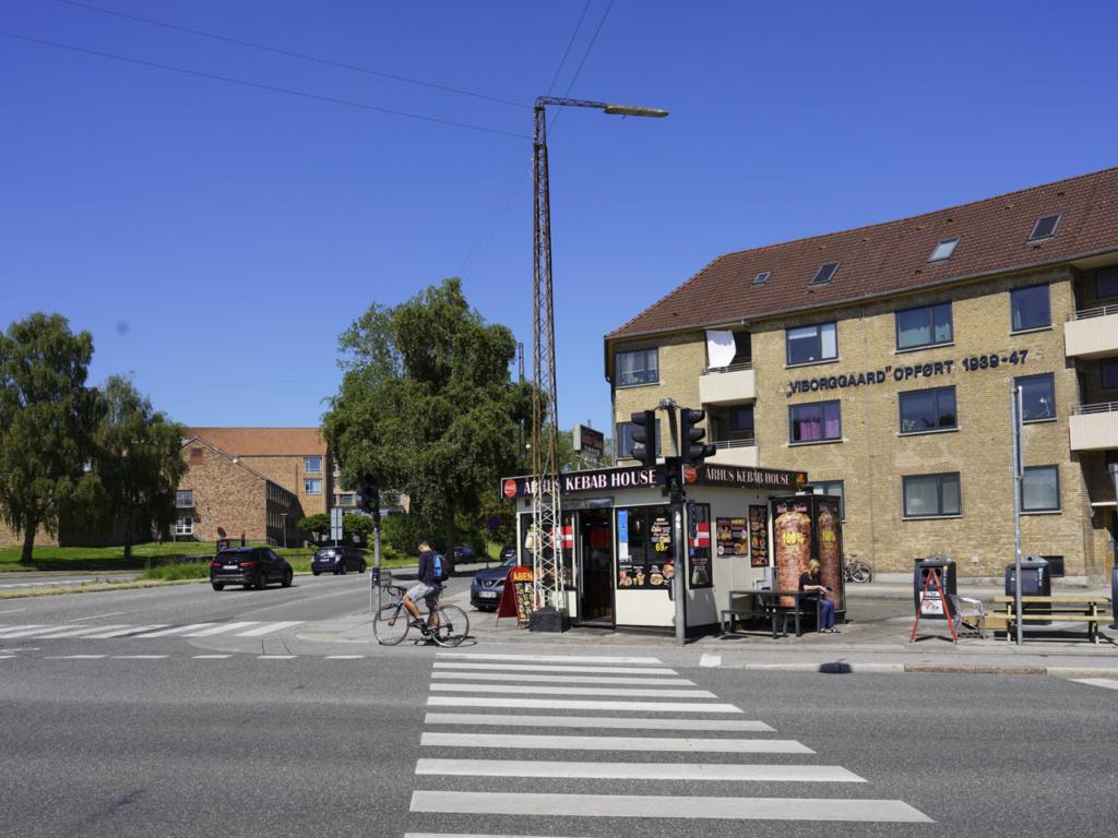 Århus Kebab House-8